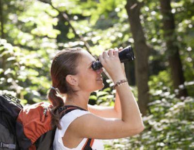 bird watching uganda