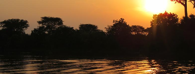 Wildlife Lake Mburo, Bwindi Gorilla Trekking, Queen Elizabeth Safari